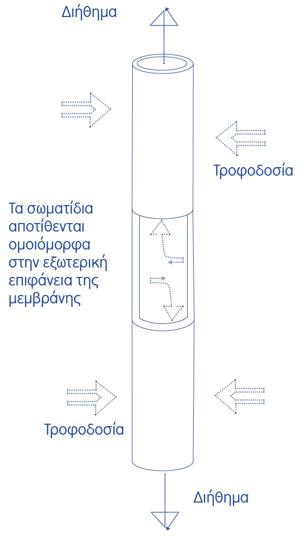 CompactReuseSystemGR