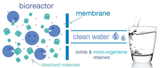 bioreactor_membrane